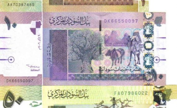 The currency of Sudan