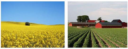 Sweden's agriculture