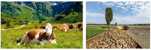 Switzerland Agriculture